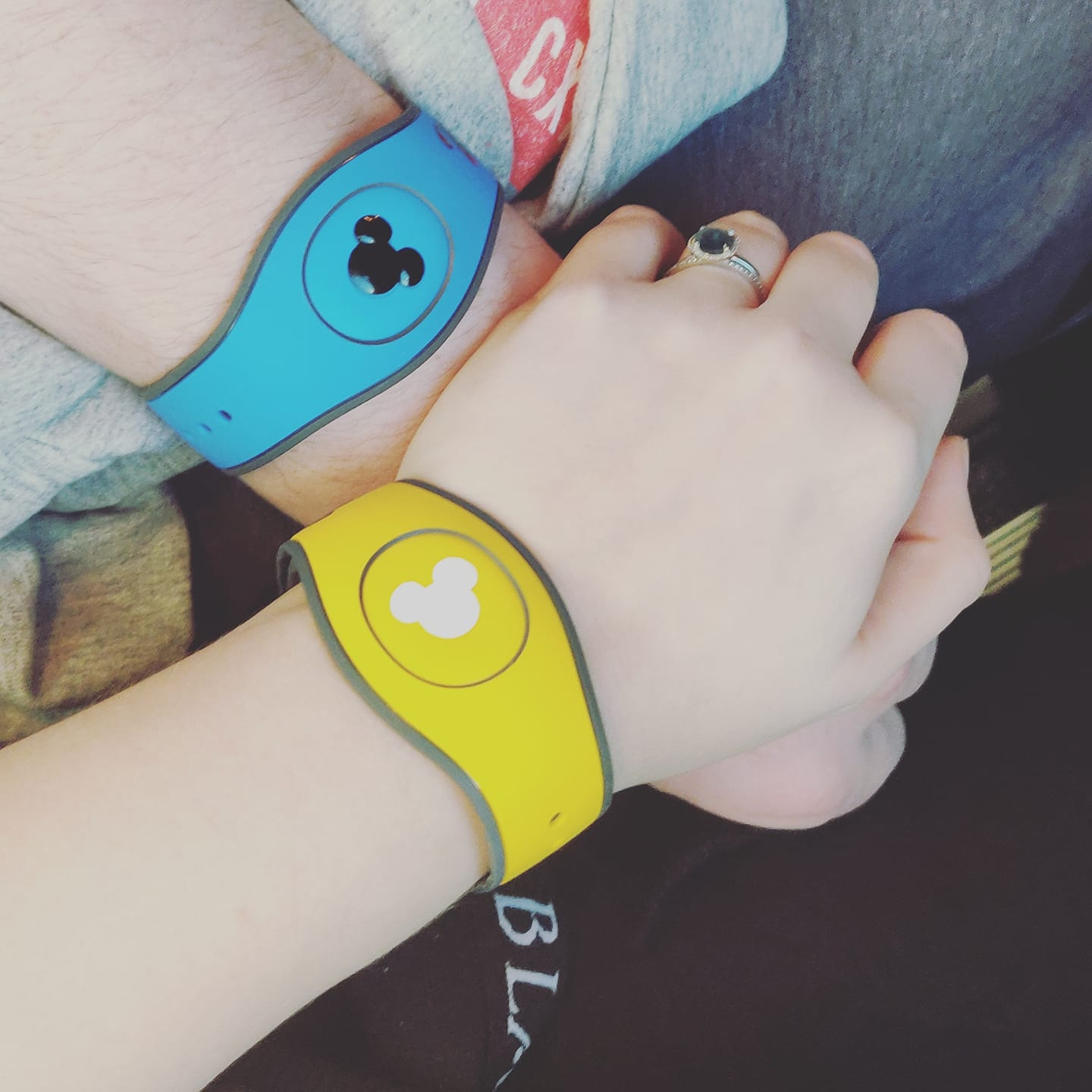 Disneymoon_magicbands